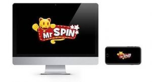 Mr Spin Casino bonus casino
